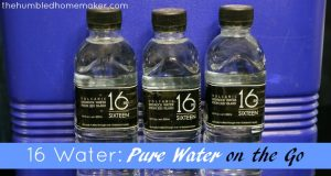 16 Water: Pure Water on the Go