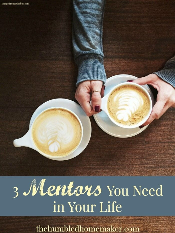 I personally believe having good mentors in your life is vital. This post gives three mentors I believe everyone needs in their life!