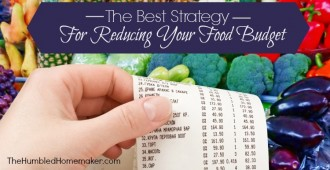 Best Strategy for Reducing Grocery Budget
