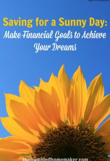 "Want to learn how to save for a ""sunny day""? Make financial goals to achieve your dreams!"