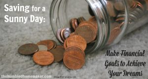 """Saving for a """"Sunny"""" Day : Make Financial Goals to Achieve Your Dreams"""