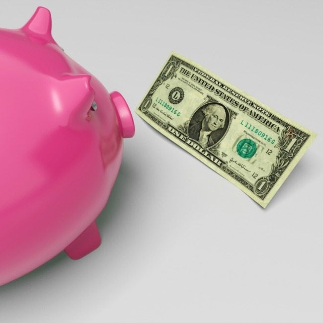 Piggy Dollars Showing Money Savings And Wealth