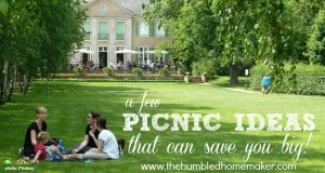 A Few Picnic Ideas That Can Save You Big