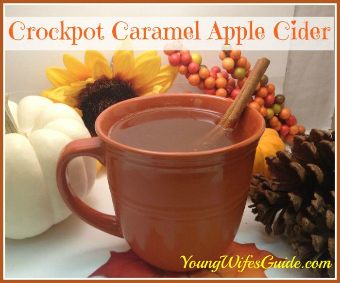 Fall-themed drinks are delicious! Here are my favorite fall beverages with flavors of pumpkin, caramel, spices, and more!