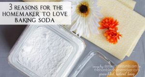 3 Reasons for the Homemaker to Love Baking Soda