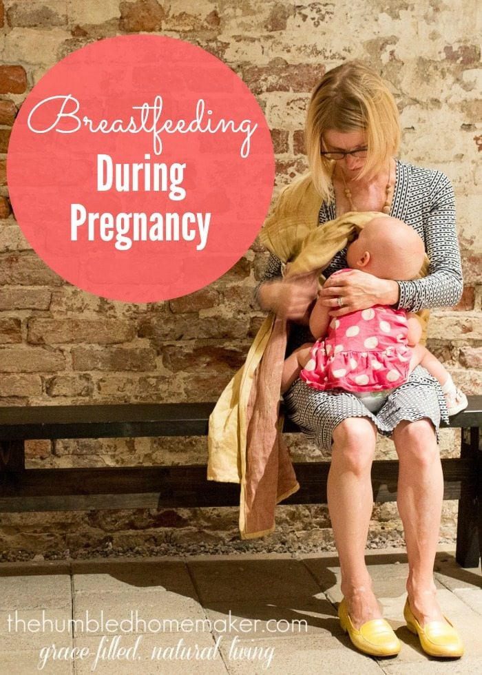 This post is all about breastfeeding during pregnancy! Can you? Should you? Here's what you need to know!