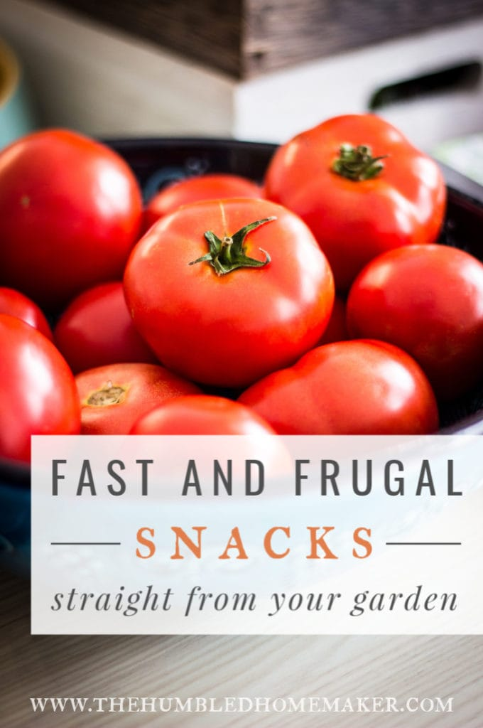 You may have all you need for a great, healthy summer snack sitting right in your backyard! Check out these fast and frugal snacks from your garden!