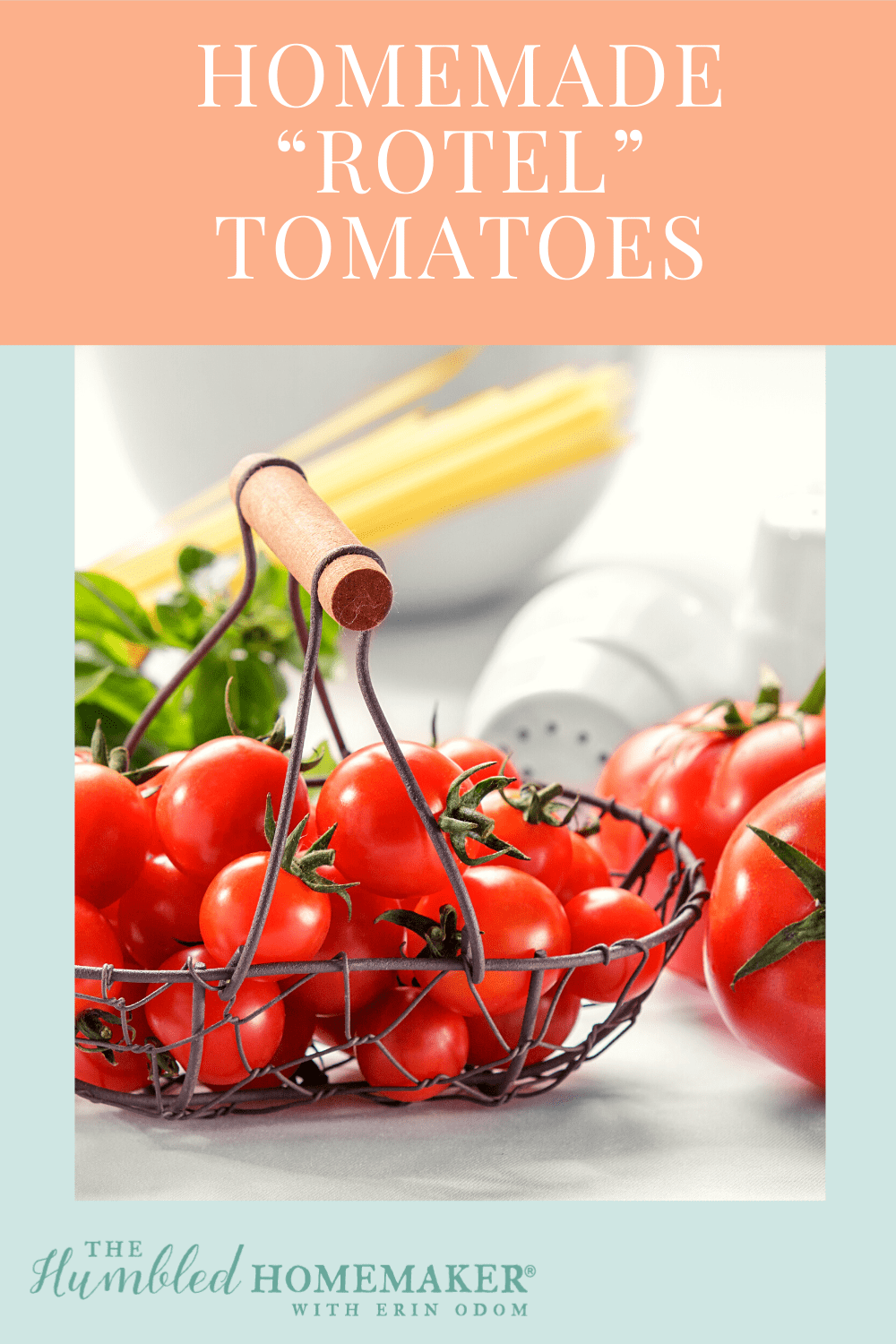 """Last summer, our modest garden exploded with peppers and tomatoes! And what better use for such healthful veggies than to make homemade """"rotel"""" (tomatoes and peppers)?"""
