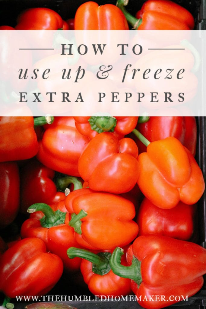 Peppers are full of health benefits, and they're extremely versatile for recipes. Here's how to freeze an abundance of peppers from your garden or the grocery store, plus a list of delicious recipes that use peppers.
