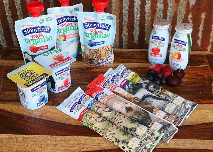 Stonyfield YoKids® yogurt After-School Snack