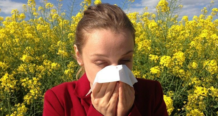 Want to avoid allergy medications? Try one of these natural home remedies to keep the sneezing and itchy eyes at bay!