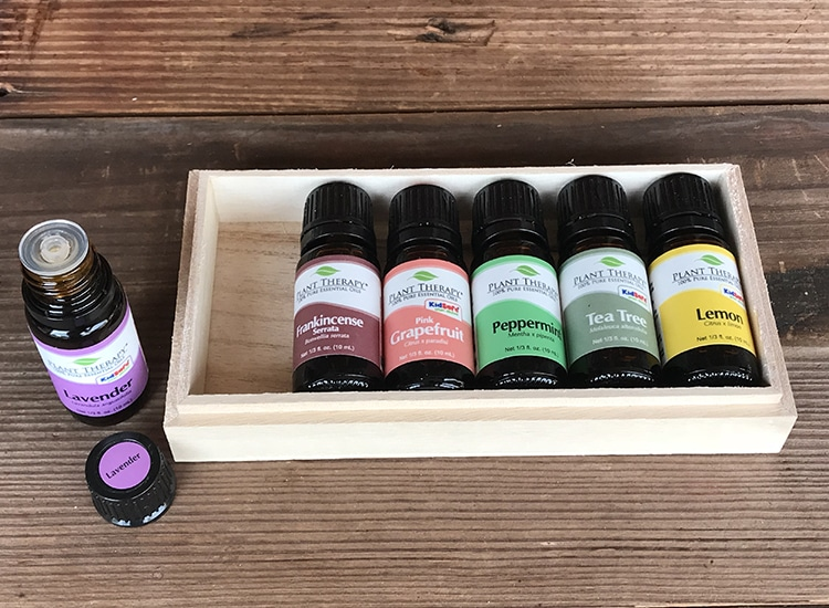 I know you're going tolove today's giveaway: a HUGE Plant Therapy Essential Oils Starter Set! Our family uses essential oils in our home every single day, and Plant Therapy is one of our favorite brands to use. They are high-qualityandaffordable, which makes them perfect for the grace-filled, natural homemaker!