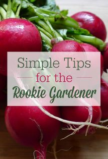 Wish you could start a garden? You can! Here are 5 things every rookie gardener needs to know!