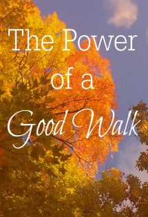 A good walk can infuse more energy into you than you ever imagined--and improve your mood! A good walk can do so much for you!