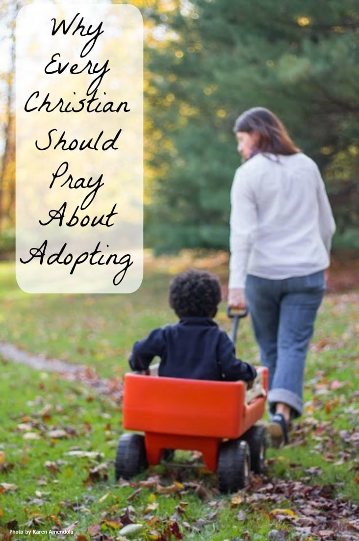 I don't believe every Christian is called to adopt, but I do believe every Christian should pray about adopting. Adopting children into our families is a risk, but it's one worth taking.