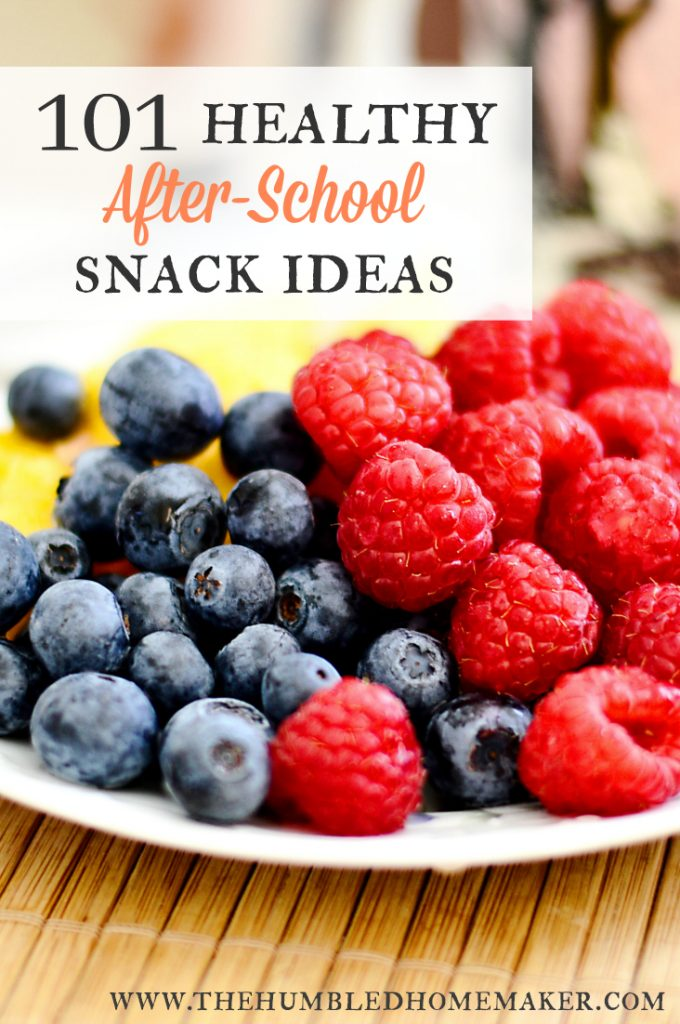 These homemade, healthy after-school snack ideas will have your kids begging for more! Most are allergen-free!!