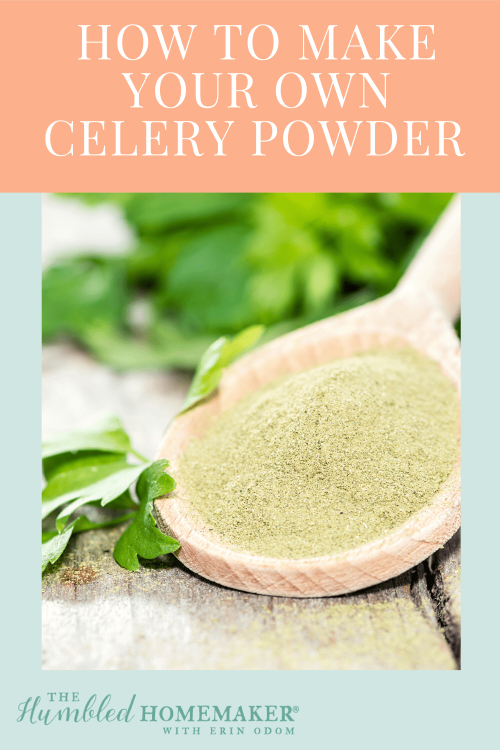 If you love homemade seasonings and spice mixes, add celery powder to the list! This simple tutorial will show you how to make your own DIY celery powder.