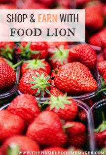 Shop & Earn with Food Lion