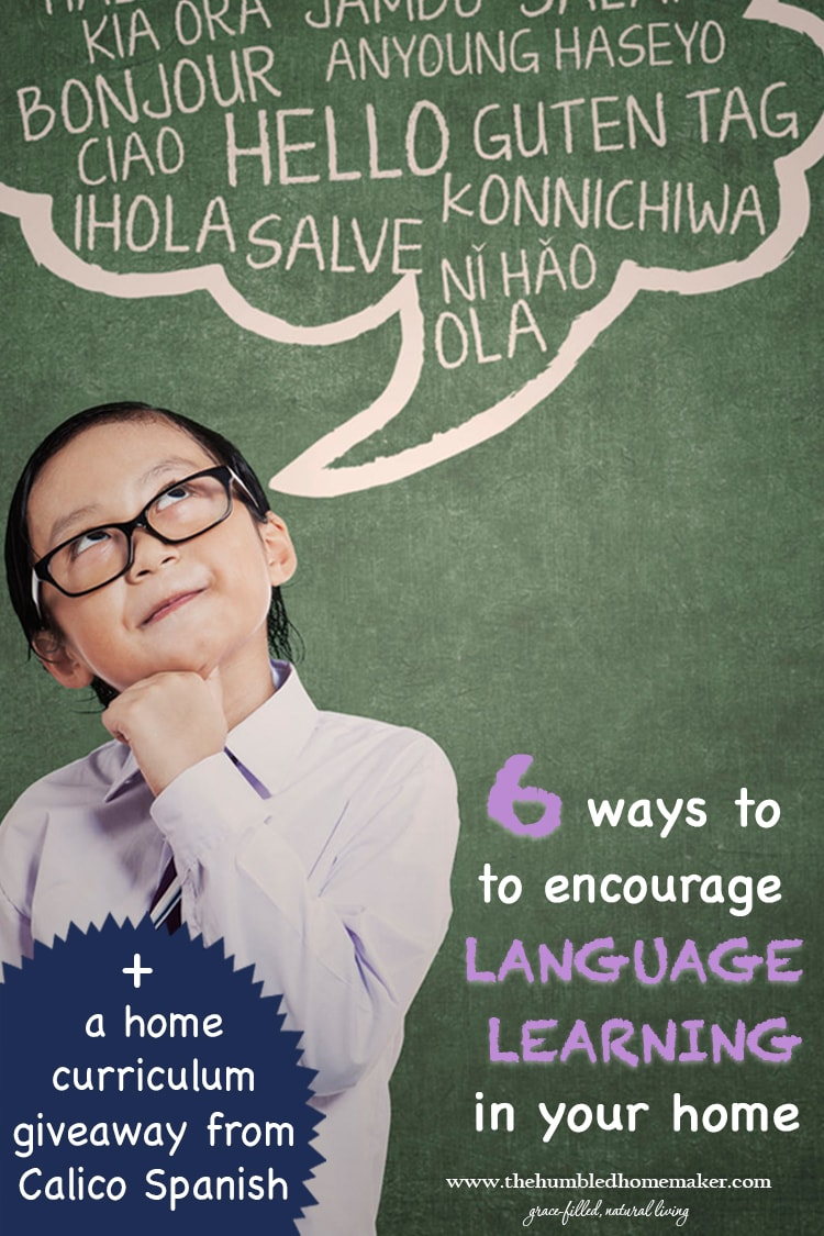 Whether you homeschool and are looking to add language learning to your school day or are interested in augmenting the language learning your children are already experiencing in their schools, I hope you will appreciate these 6 ways to encourage language learning in your home!