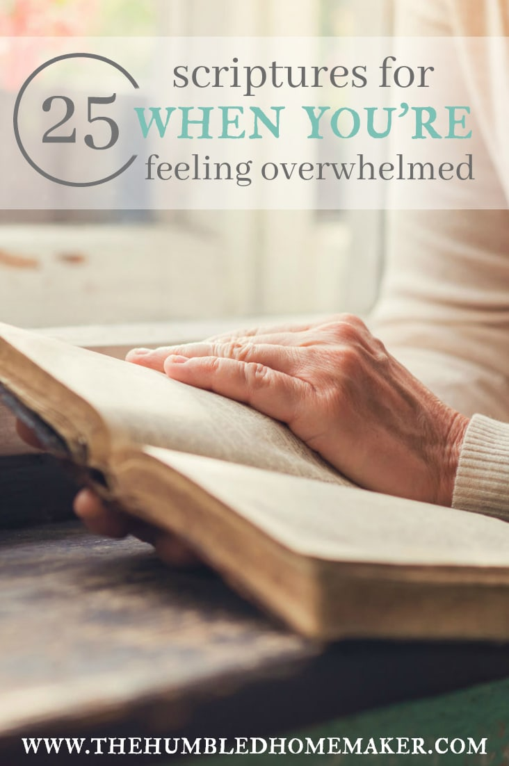 25 scriptures for when you re feeling overwhelmed